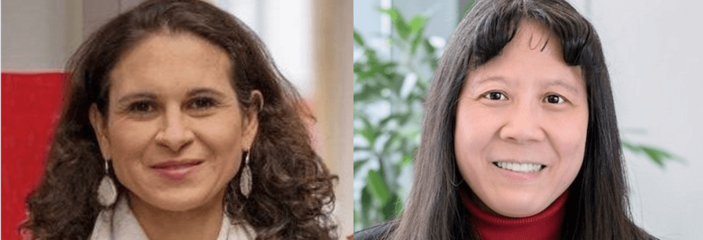 Dominici & Lin Elected to National Academy of Medicine