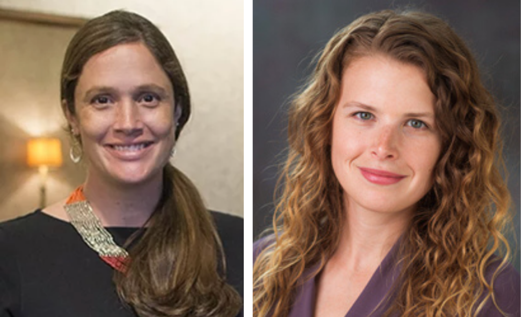 Bethany Hedt-Gauthier & Isabel Fulcher Receive Canadian Institutes of Health Research Grant