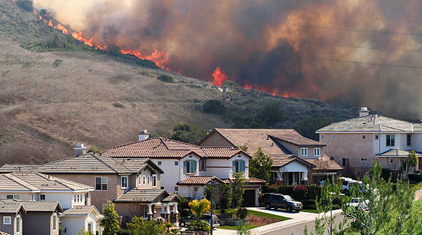 Excess of COVID-19 cases and deaths due to fine particulate matter exposure during the 2020 US wildfires