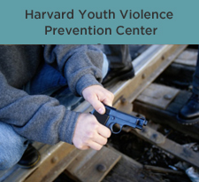 Harvard Youth Violence Prevention Center